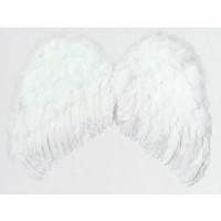 Alas Angel Plumas 60x48
