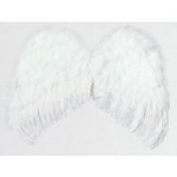 Alas Angel Plumas 60x48