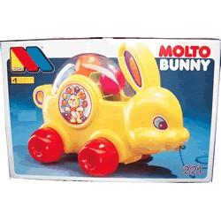 Molto Bunny