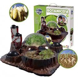 Botanicefa