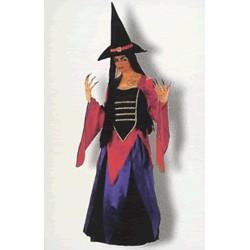 Disfraz Bruja Violeta con gorro  (Adulto)